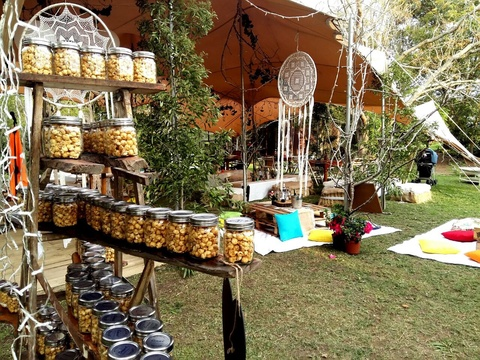 forest weddings at peace of eden backpackers lodge and vegan retreat knysna