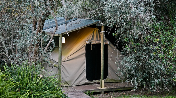 Forest Tents Peace Of Eden Nature Lodge And Vegan Retreat