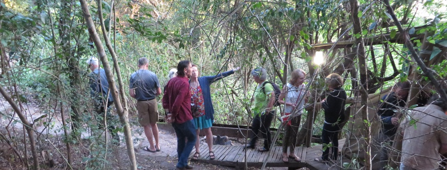 forest nature guiding at Peace of Eden Vegan lodge in Knysna south africa